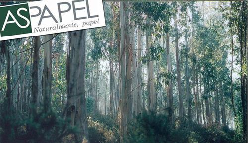 """ASPAPEL advierte al Gobierno de que las nuevas tasas energéticas """"golpean"""" la competitividad"""