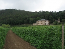 243.000 euros en ayudas a la producción ecológica para formación y estimular el consumo