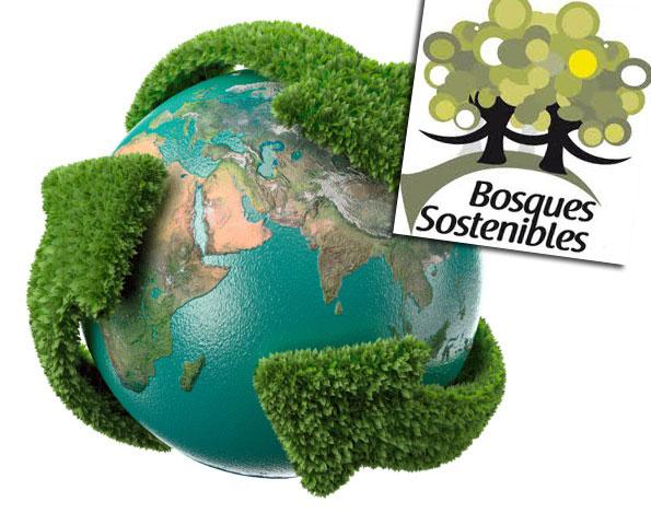 Bosques Sostenibles se adhiere al Pacto Mundial de la ONU