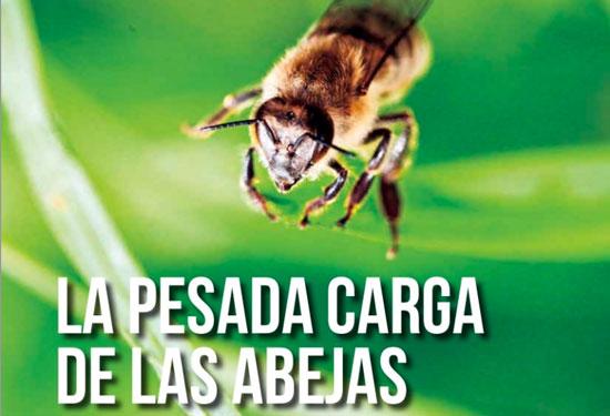 Cóctel de plaguicidas tóxicos en el 67% del polen europeo