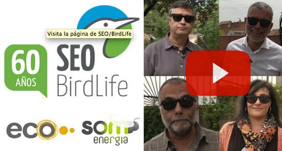 SEO/BirdLife se pasa a la electricidad 100% renovable para seguir luchando contra el cambio climático