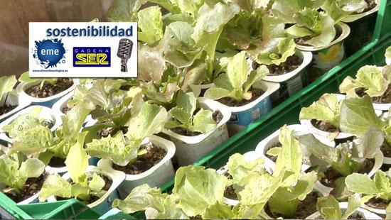 La agricultura ecológica familiar puede alimentar nuestro mundo