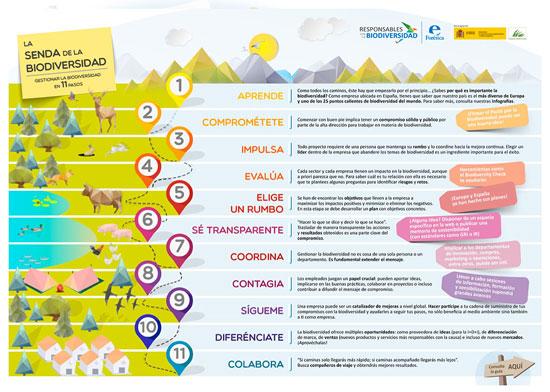 Los once pasos para gestionar la biodiversidad en la empresa