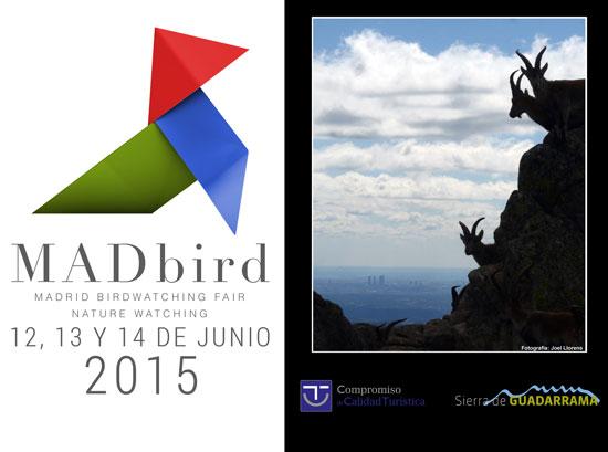 La  Sierra de Guadarrama vuela hasta MADbird Fair 2015