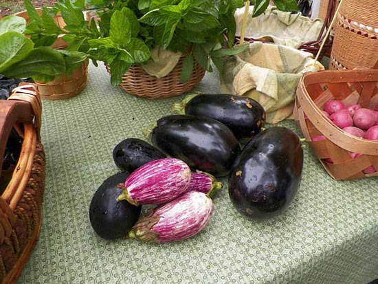 Eco, bio, orgánico. Alimentación y salud, transgénicos…