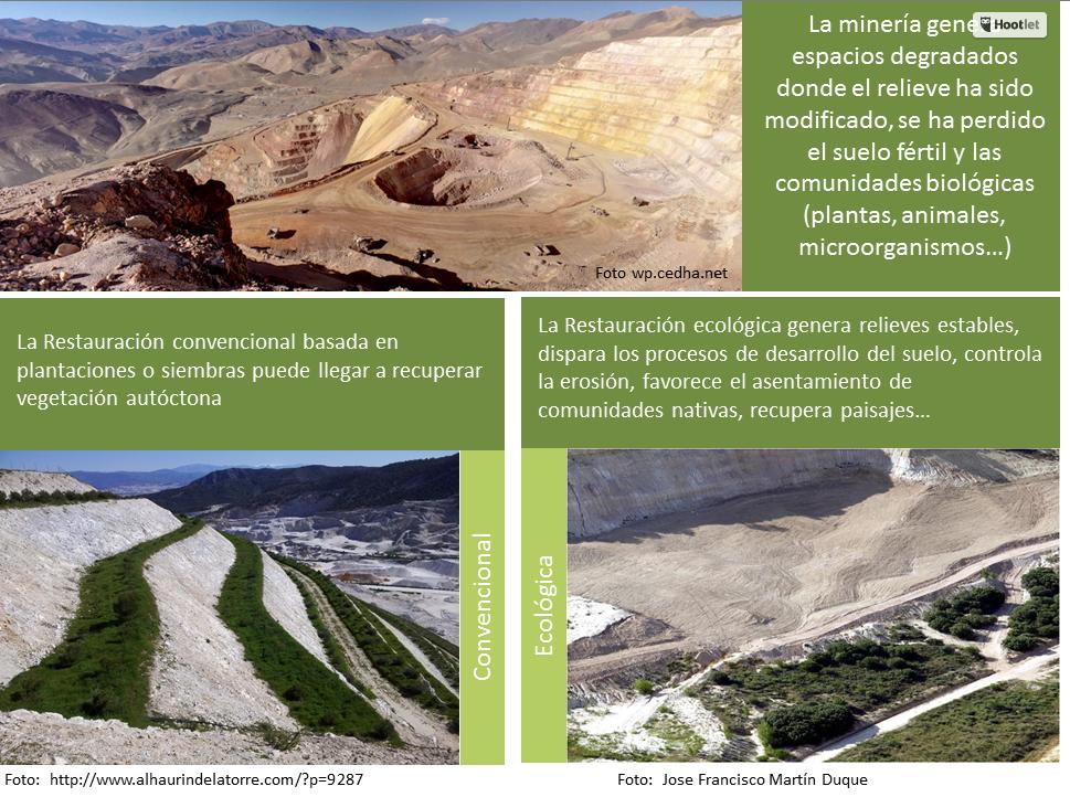 Creando redes foro restauración ecologica el mundo ecologico