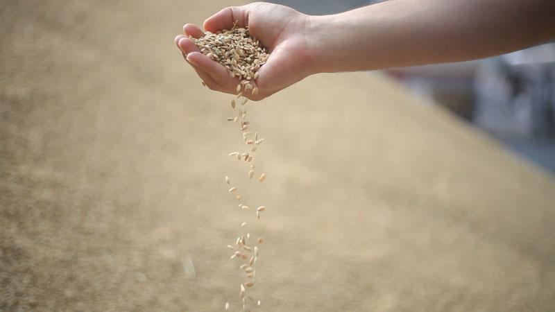 TV-bio-biocop-yo-tambien-soy-agricultor-el-mundo-ecologico-5