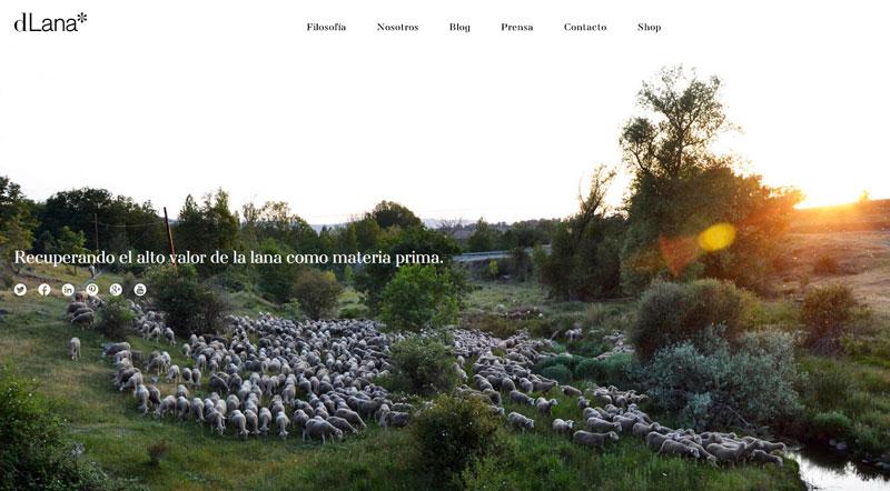 dlana-tienda-lana-autoctona-moda-sostenible-el-mundo-ecologico-2-web
