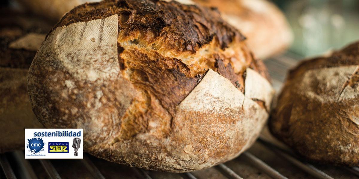 El arte de hacer buen pan ecológico