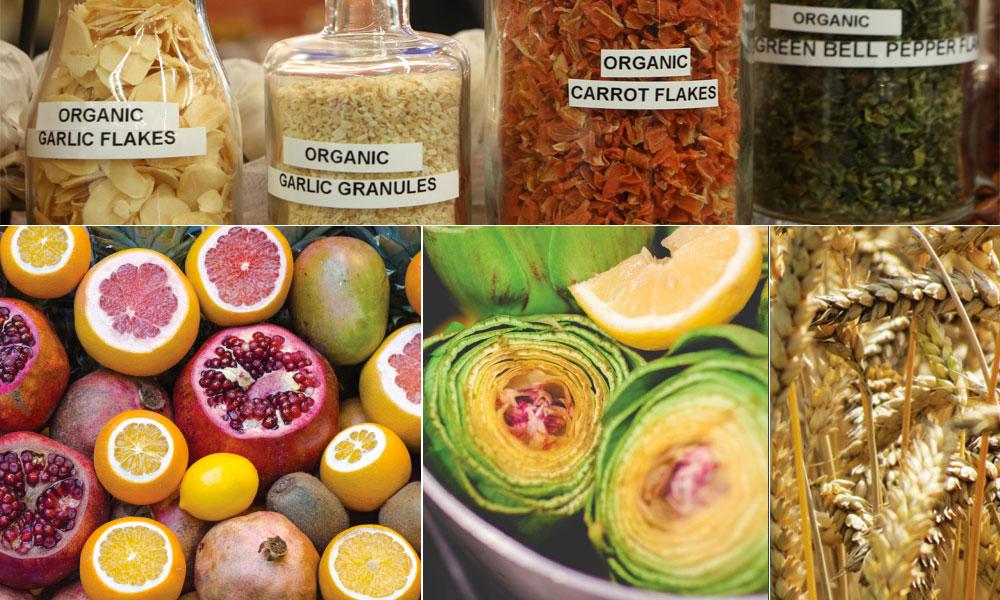 Cómo montar una tienda ecologica biocultura sevilla 2017