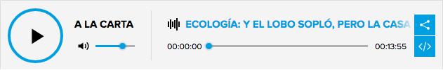Casas de paja Ecopaja El Mundo Ecologico Entrevista Cadena SER
