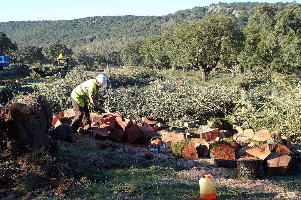 Mina de uranio Retortillo Salamanca GREFA