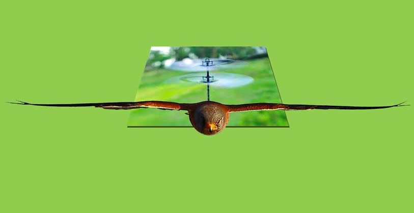 Kowat control biomimetico marca españa dron control de aves