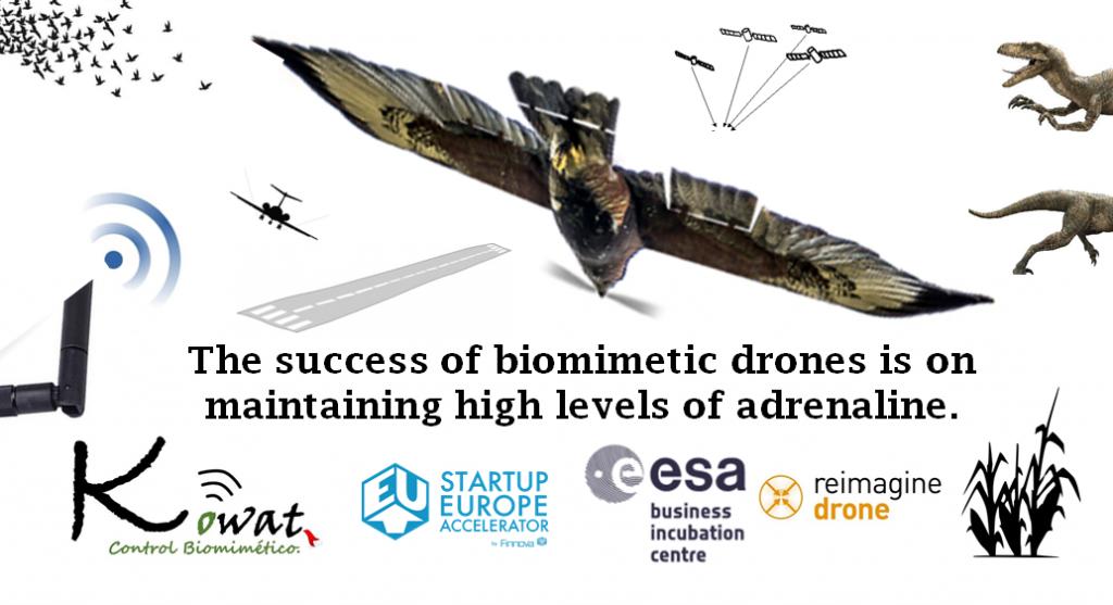 Kowat biomimetic drone Kowat control biomimetico marca españa dron control de aves