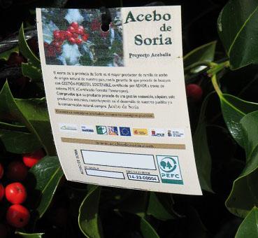 Certificado Acebo Sostenible Soria