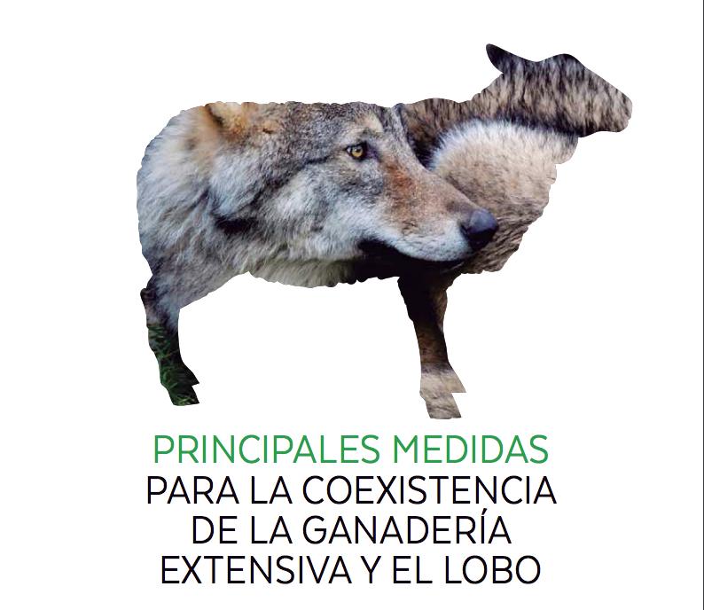 Cómo los ganaderos pueden convivir con los lobos