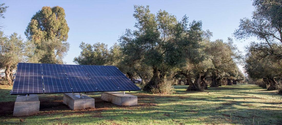 Mapa de la primera Oleada Solar de ecooo Generador Solar Solidario