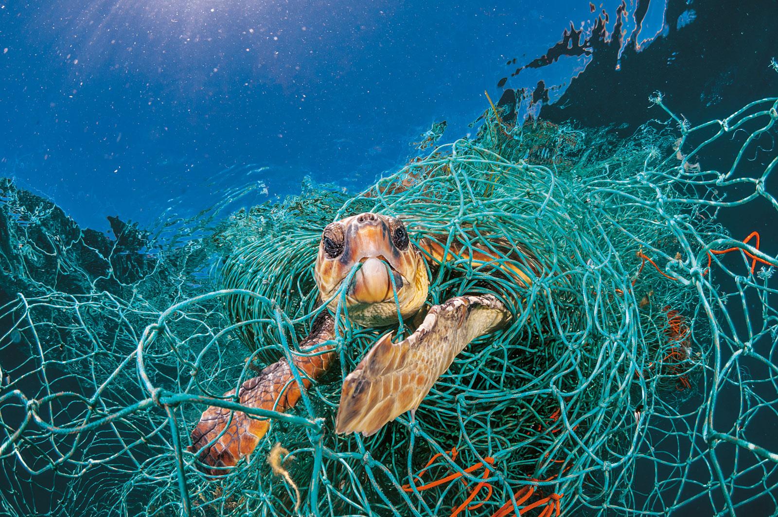National Geographic planeta o plástico mar de plastico