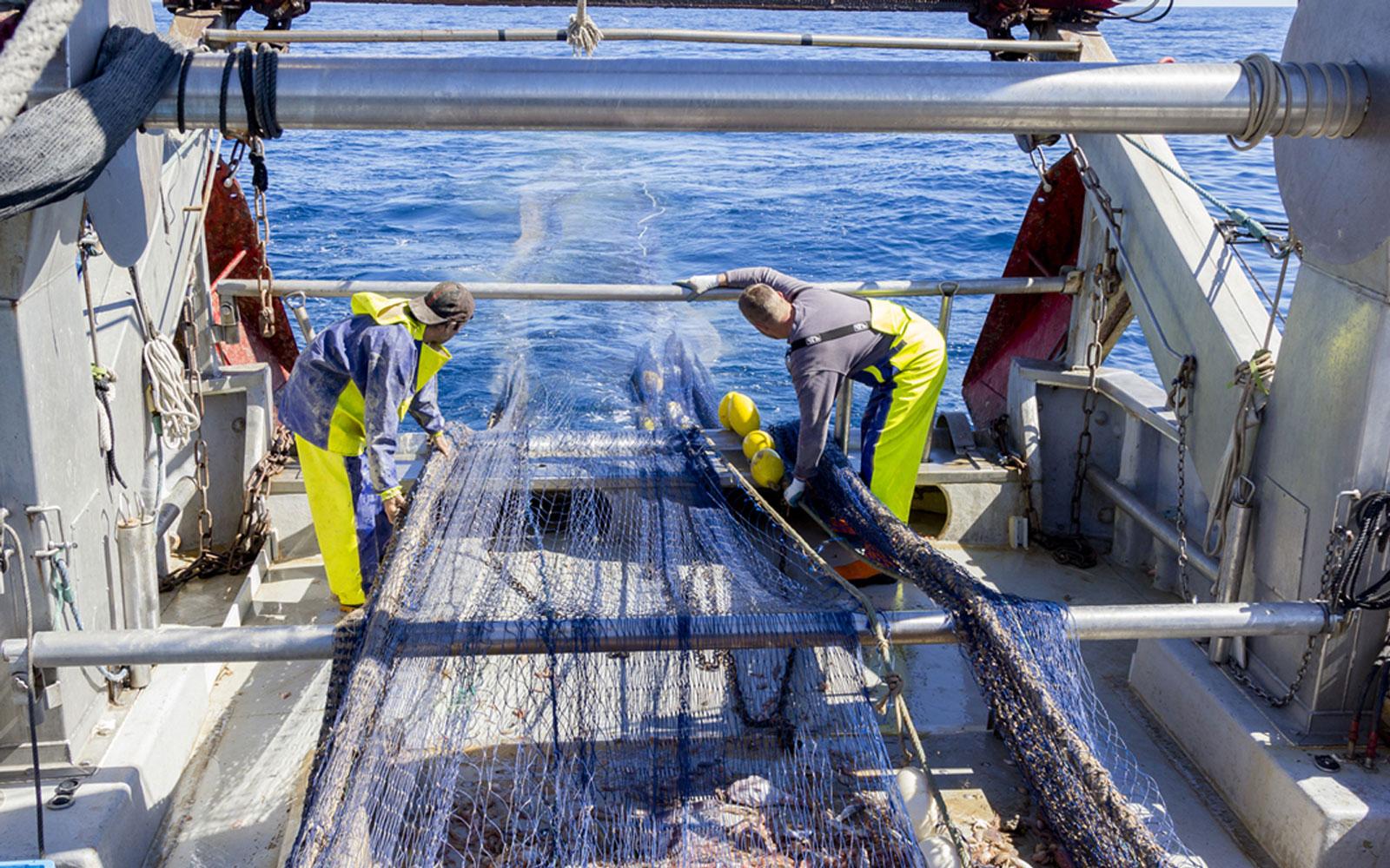 Pescando basuras del mar