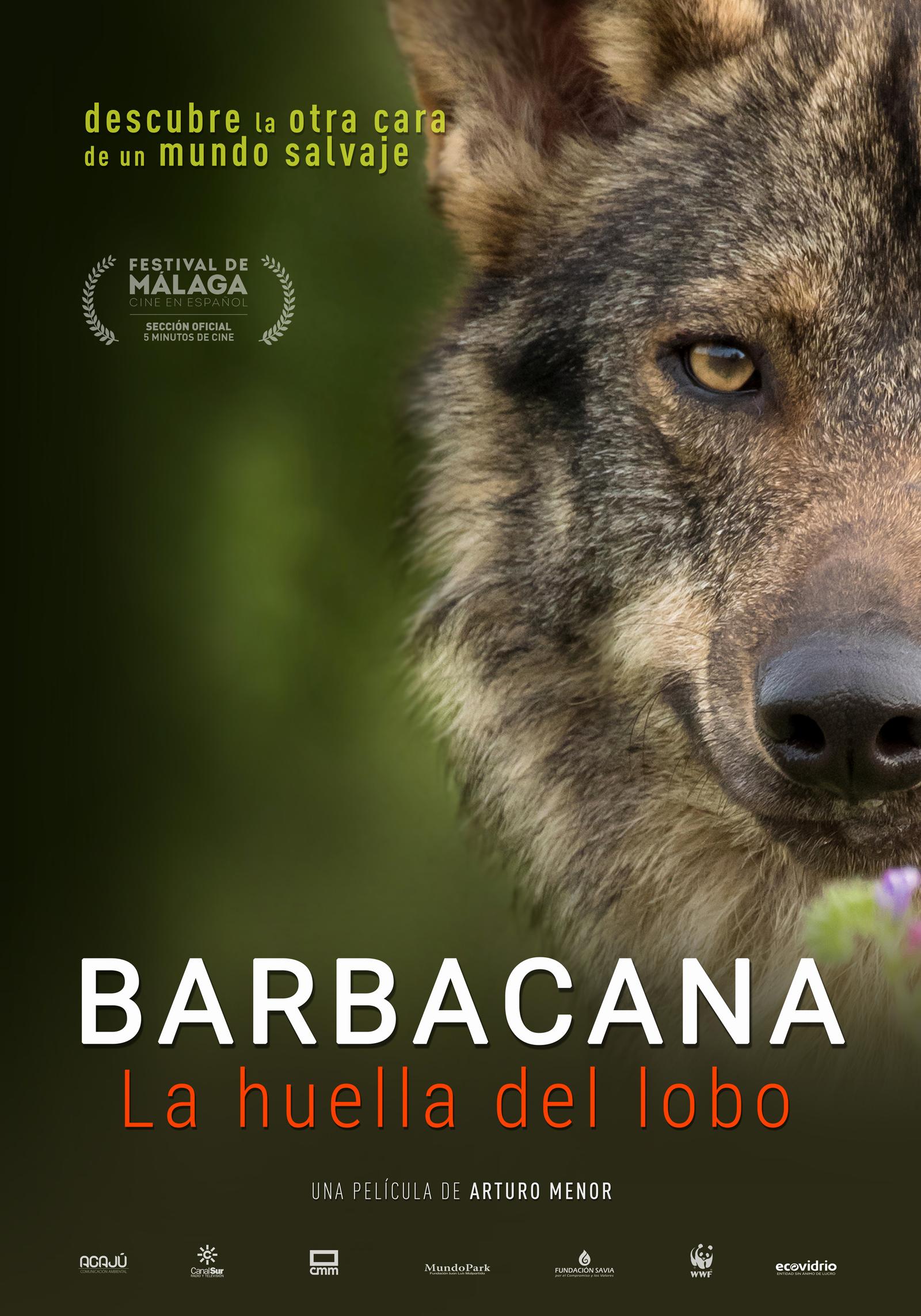 Barbacana la huella del lobo película Arturo Menor prevención ataques lobos Cartel