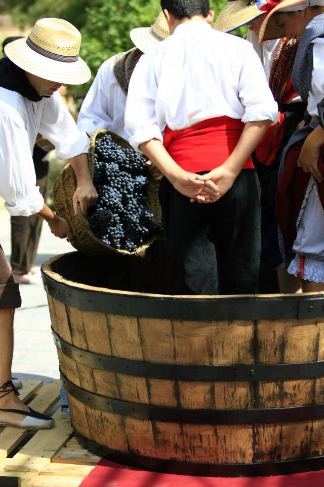 Ruta del vino Yecla Enoturismo Murcia