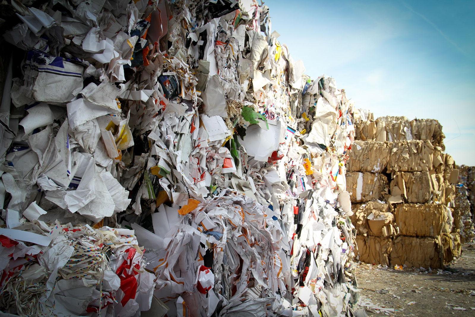 Economía circular papel y carton empleo