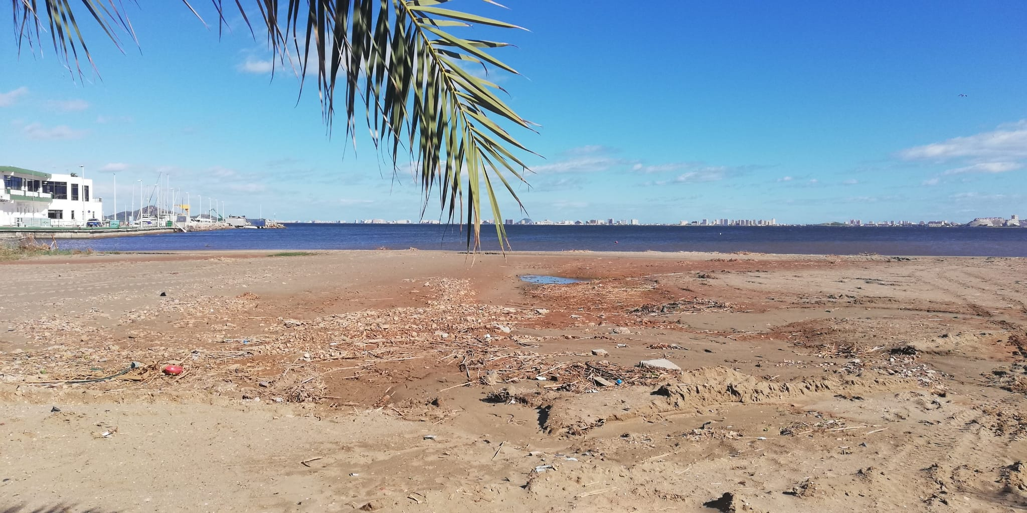Mar menor ecologia problema ambiental