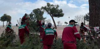 evalúan daños áreas verdes