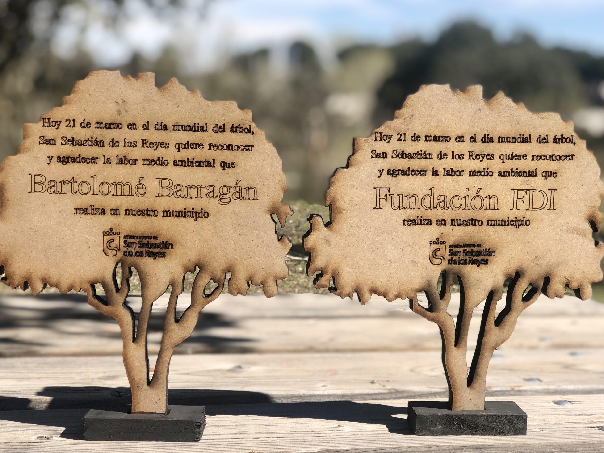 Reconocimientos día mundial del arbol Ayuntamiento de San Sebastián de los Reyes