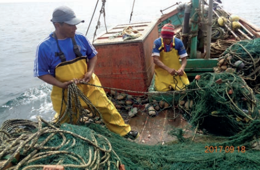 Pescaderos