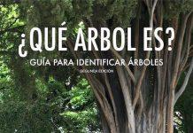 Paco Lara, ¿Qué árbol es?