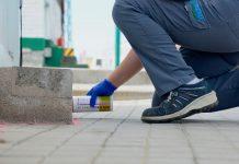 Consejos para prevenir una plaga de hormigas en casa
