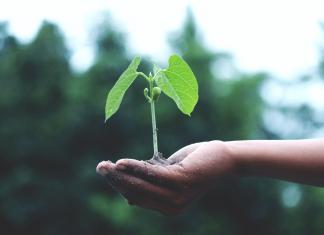 La responsabilidad social y la sostenibilidad en el sector industrial