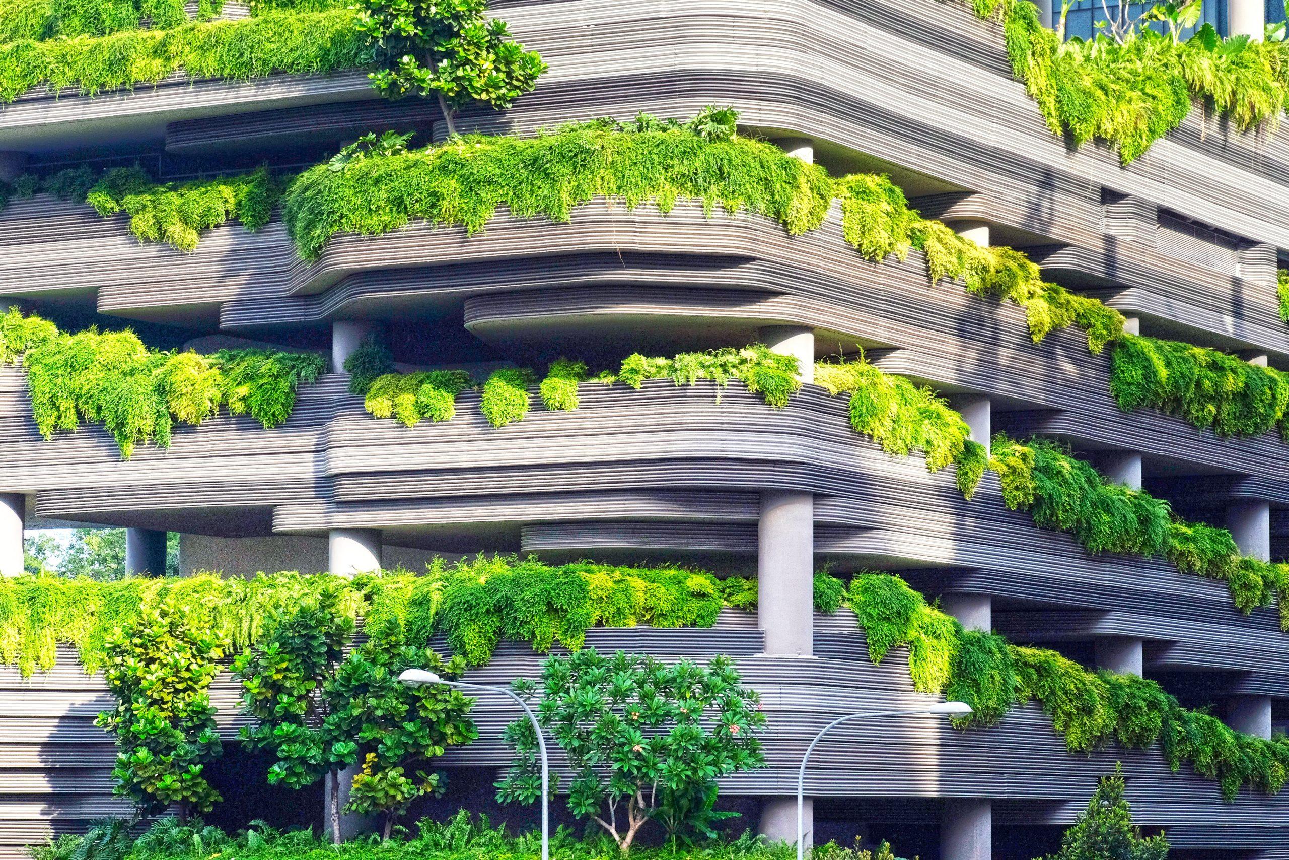 Ciudad verde